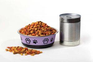Sausas ar šlapias kačių maistas